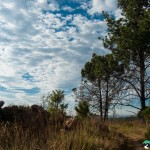 Hedianga-Pretoria-KyleRedelinghuys-10