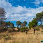 Hedianga-Pretoria-KyleRedelinghuys-11