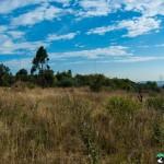 Hedianga-Pretoria-KyleRedelinghuys-19