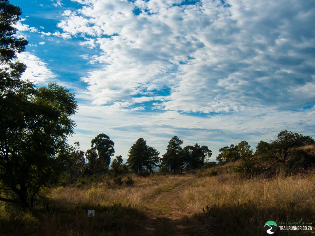 Hedianga-Pretoria-KyleRedelinghuys-2