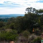 Hedianga-Pretoria-KyleRedelinghuys-21