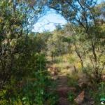 Hedianga-Pretoria-KyleRedelinghuys-22
