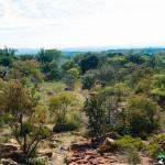 Hedianga-Pretoria-KyleRedelinghuys-23