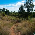Hedianga-Pretoria-KyleRedelinghuys-26