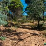 Hedianga-Pretoria-KyleRedelinghuys-28
