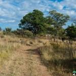 Hedianga-Pretoria-KyleRedelinghuys-4