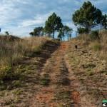Hedianga-Pretoria-KyleRedelinghuys-6