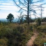 Hedianga-Pretoria-KyleRedelinghuys-9