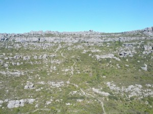 IMG_20150411_101656_TableMountain