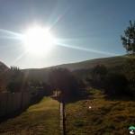 NewlandsForest-CapeTown-KyleRedelinghuys-4