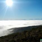 NewlandsForest-CapeTown-KyleRedelinghuys-5