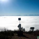 NewlandsForest-CapeTown-KyleRedelinghuys-9