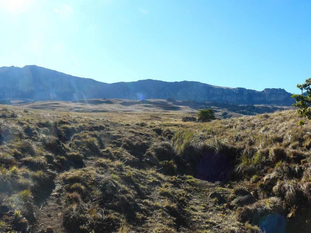 Recce_Run__Drakensberg_Alpine_Heath-11