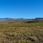 Recce_Run__Drakensberg_Alpine_Heath-13