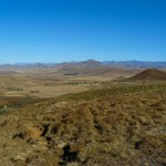 Recce_Run__Drakensberg_Alpine_Heath-14