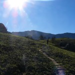 Recce_Run__Drakensberg_Alpine_Heath-16