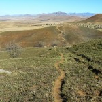Recce_Run__Drakensberg_Alpine_Heath-18