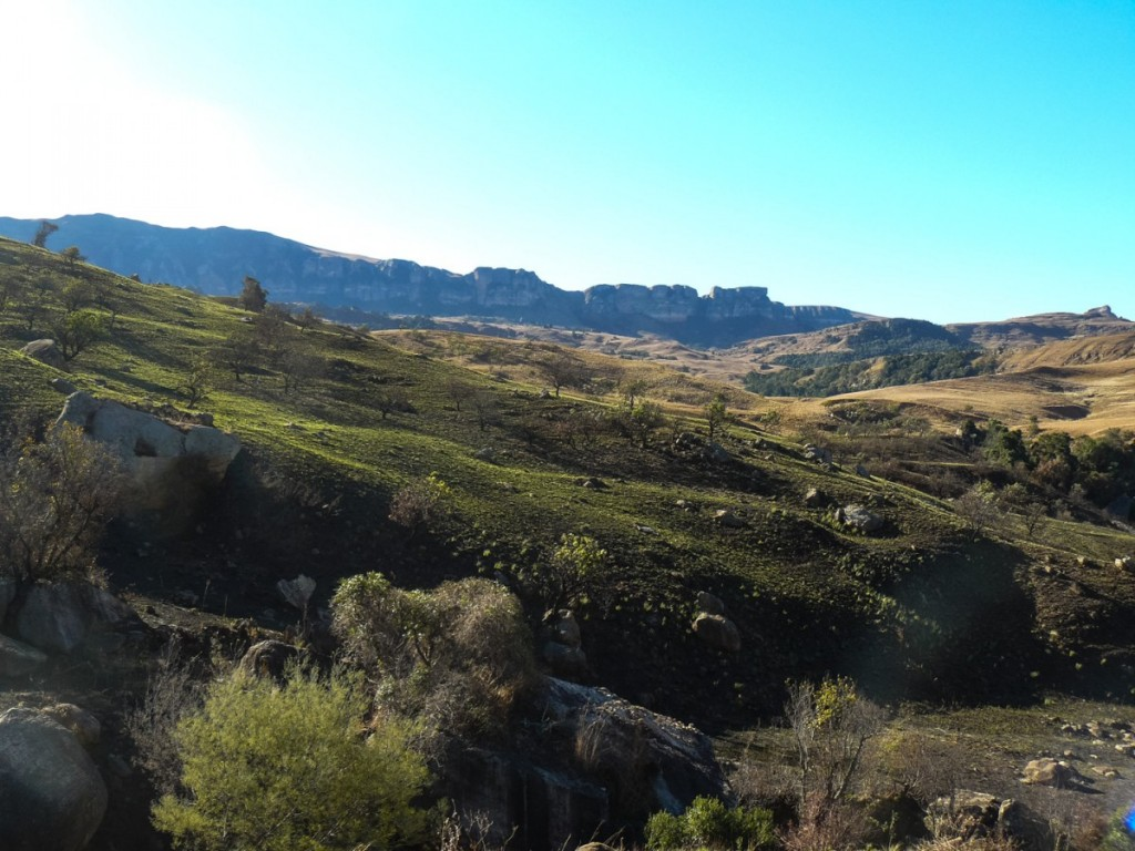 Recce_Run__Drakensberg_Alpine_Heath-21