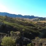 Recce_Run__Drakensberg_Alpine_Heath-21