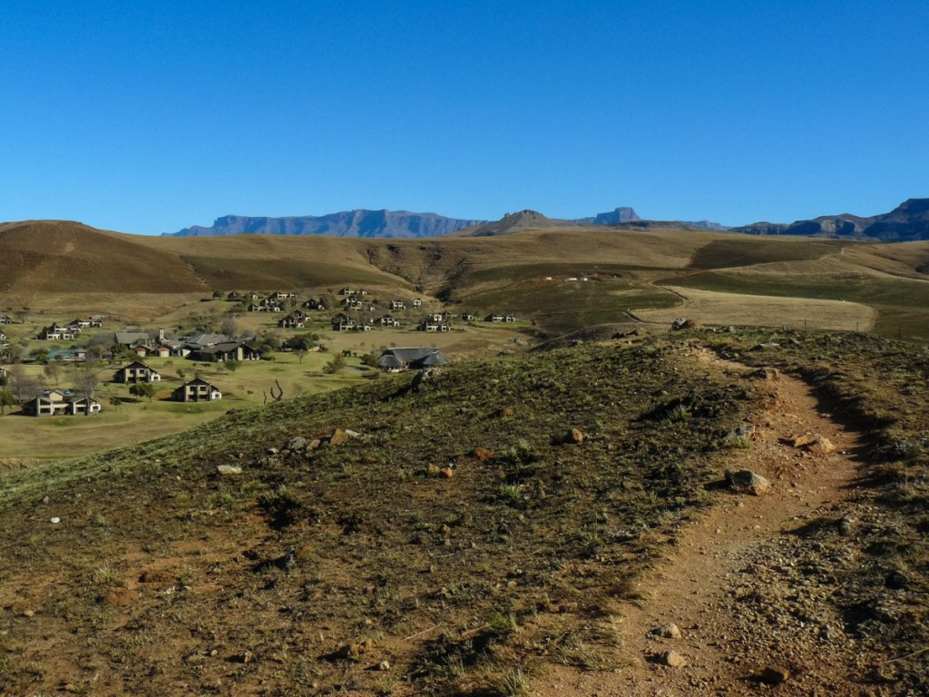 Recce_Run__Drakensberg_Alpine_Heath-23