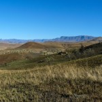 Recce_Run__Drakensberg_Alpine_Heath-8