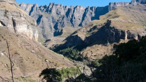 Gorge_Walk__Drakensberg_Alpine_Heath-28