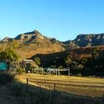 Morning_Run__Drakensberg_Alpine_Heath-2