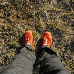 Morning_Run__Drakensberg_Alpine_Heath-8